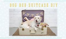 Evcil Hayvanlarınız İçim Yatak Yapım Fikirleri